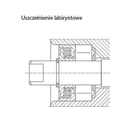 tech_rodz_uszcz_labirynt